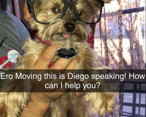 1_Diego